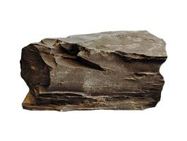 edimentary Rocks - Pass My Exams: Easy exam revision notes for ...