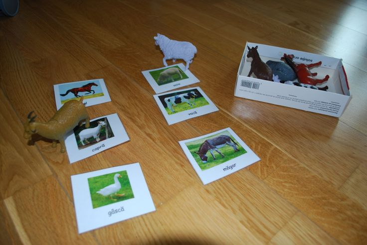 Matching toy animals to their pictures