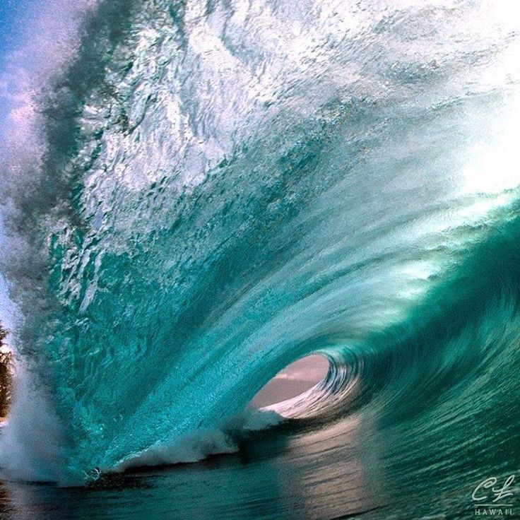 "Clark Little Photography, Hawaii - ""Largest Swell Of 2016"""