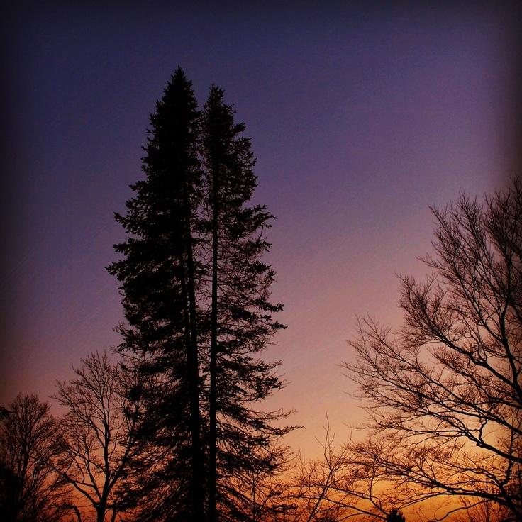 Awesome sunset! ✨