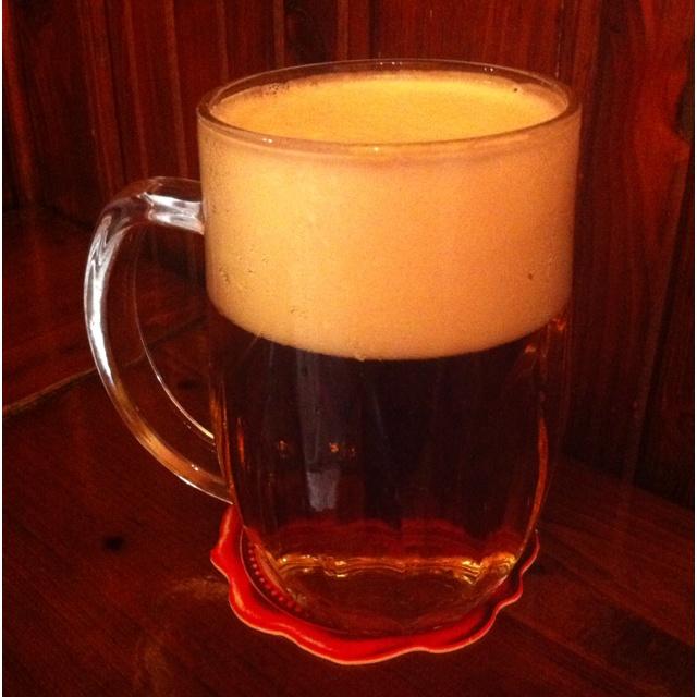 Jelinkova Plzenska Pivnice. Simply the best beer in Prague!