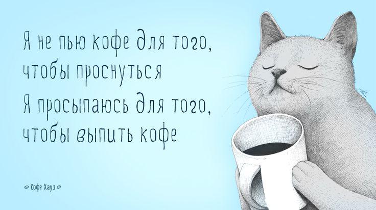 #кот #кофе #утро #coffee #morning  #кофехауз