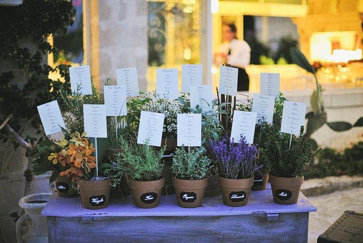 herbs - tableau the mariage - table plan Weddings in Ostuni