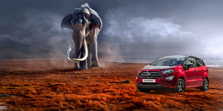 Be prepared for anything with the New Ford EcoSport - Coming to Foray in January!!!