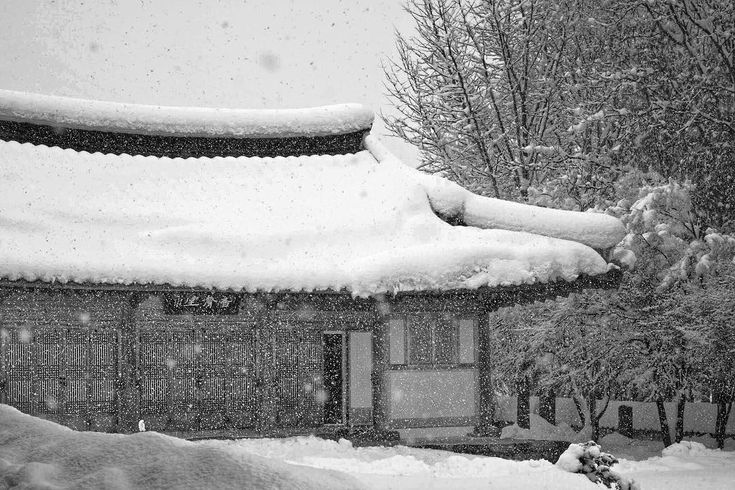 Snow falls on a residential cottage of a Buddhist temple in Samcheok Gangwondo South Korea. . . . . @peakdesign . . . #monochromefortheholidays #travel #winter #snow #korea #fallingsnow #blackandwhite #winterwonderland #겨울 #강원도 #삼척 #gangwondo #corée #coréedusud #hiver #눈 #neige #natgeotravel #BBCTravel #tlpicks #lonelyplanet #Canadiantraveller #cntraveler #thedecisivesketch