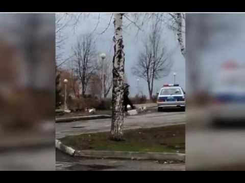 В Новокузнецке сотрудники ГИБДД применили силу к женщине