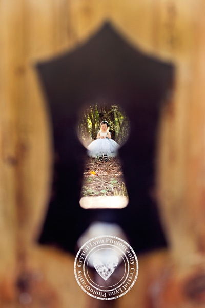 alice in wonderland, alice in wonderland themes, child photography, photo themes, alice picture ideas