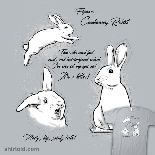 Apex Predator #bunny #film #killerrabbitofcaerbannog #montypython #montypythonandtheholygrail #movie #rabbit #simic