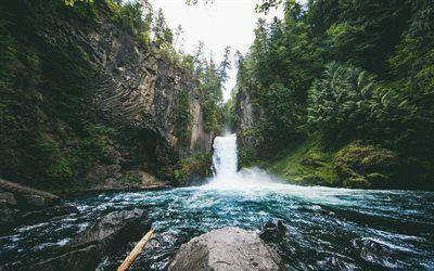 壁紙をダウンロードする Toketeeの滝, 滝, 川, 森林, 美しい景色, 米国, オレゴン州