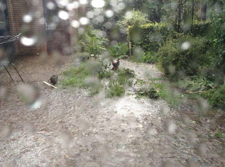 Het bleef maar komen, regen en hagelstenen als knikkers. Uiteindelijk 30CM op het dak en in de tuin. Hele tuin naar de knoppen. Water uit plafond naar beneden