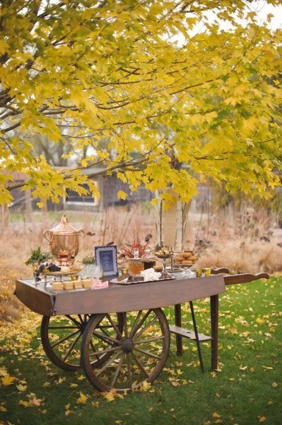Chicago Botanic Gardens Styled Engagement Party By