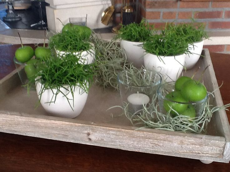 Dienblad met rhipsalis vetplantjes decoratie pinterest for Ikea fleurs artificielles