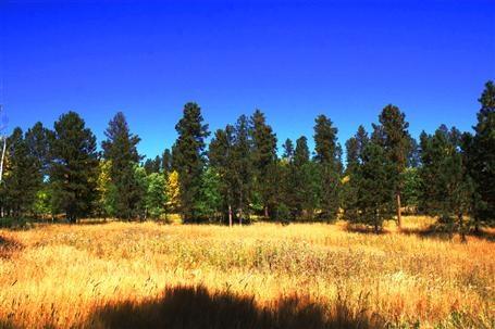 Black Hills land. Powder House Pass.