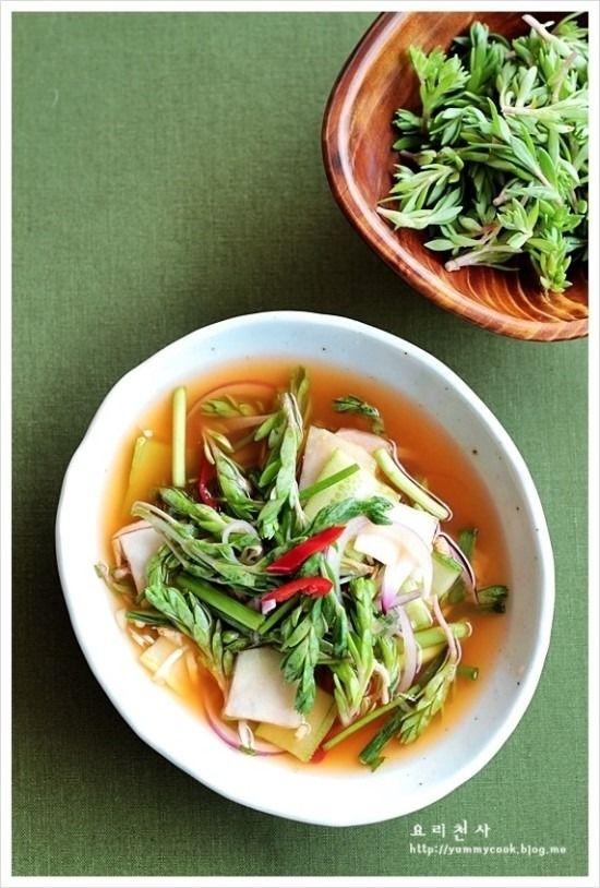 돌나물 물김치/콜라비 물김치만드는법 - Daum 요리