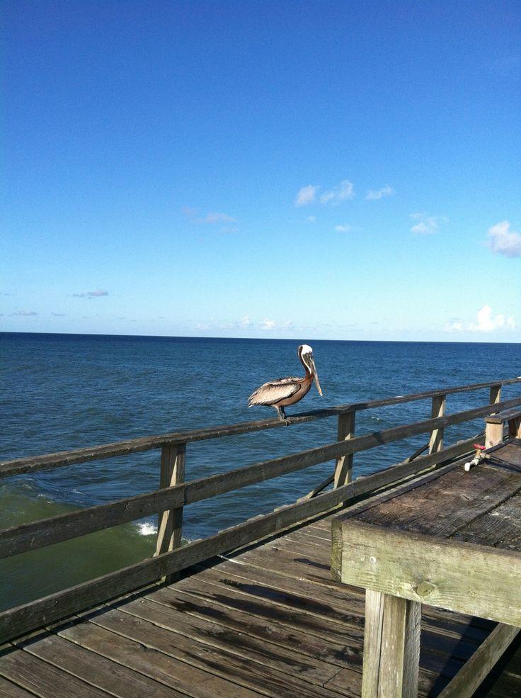 New Smyrna Beach Florida To Wilmington Nc