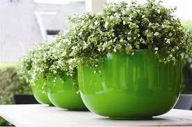 Afbeeldingsresultaat voor bloempotten