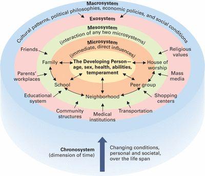 The Ecological Model- Bronfenbrenner