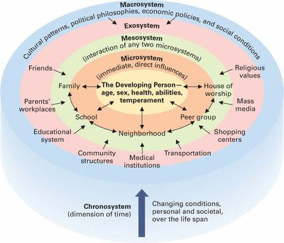 The Ecological Model- Bronfenbrenner