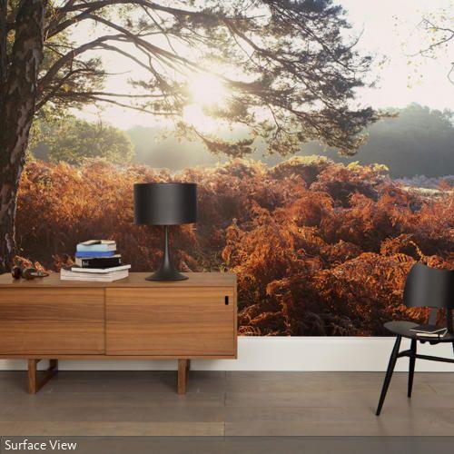 es scheint als wenn sich der raum mitten in einem wald befindet das waldmotiv der fototapete l. Black Bedroom Furniture Sets. Home Design Ideas