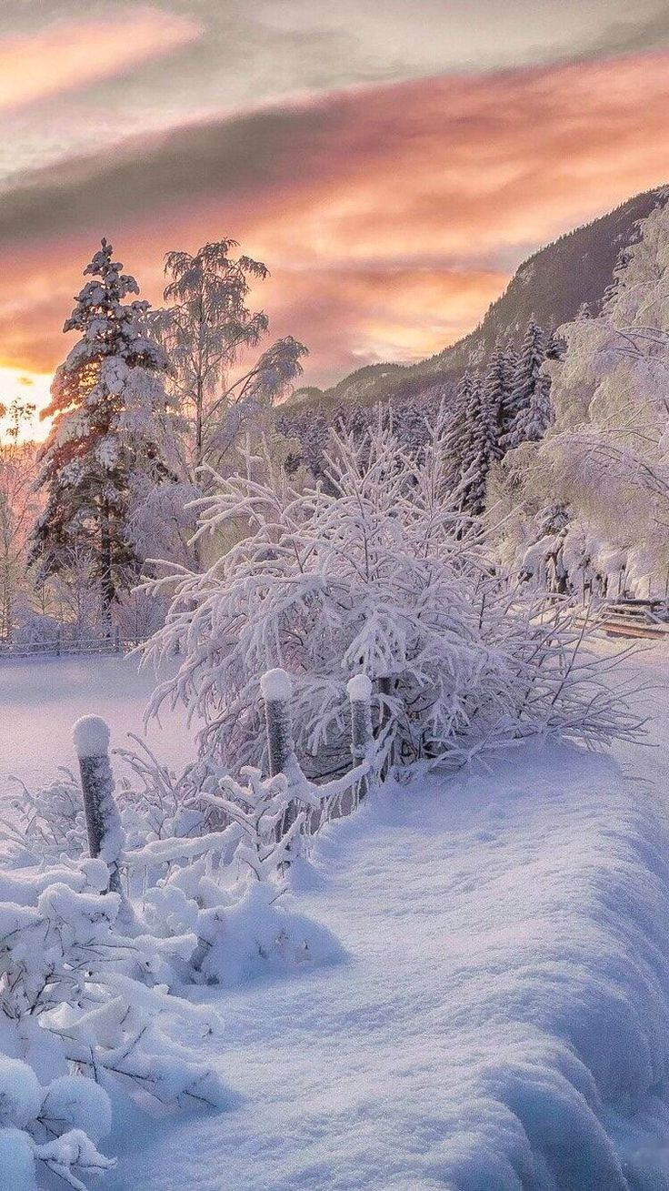 ***Winter sunset (no location given) by Drilon Tahiraj / 500px ❄️