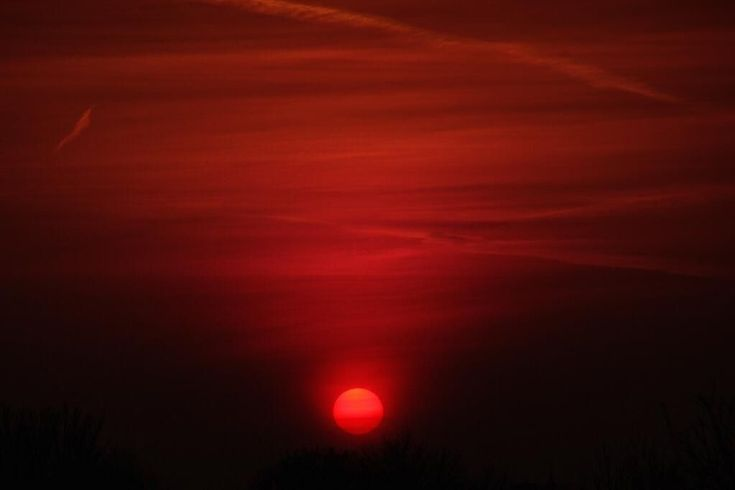 Michael Sheehan captured this March sunrise over West Hampstead