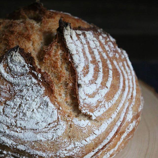 Es knistern noch!  Das 50/50 Brot habe ich im Topf gebacken so wird die Kruste schön knusprig. Optisch gefällt es mir auch recht gut nur leider kann ich im Moment nichts riechen.... #brot #brotbacken #cakescookiesandmore #hefeteig #hefeteigliebe #schweizerfoodblog #swissfoodblog