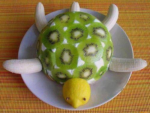 Tortuga de frutas. Da pena comérsela