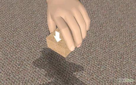 Bildtitel Get Dog Urine Smell out of Carpets Step 2
