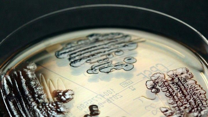 #Antibiotika-Resistenz - Schwere Vorwürfe gegen Pharmafirmen in Indien - Deutschlandfunk: Deutschlandfunk Antibiotika-Resistenz - Schwere…