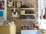 Best Pet Supply Stores in NYC