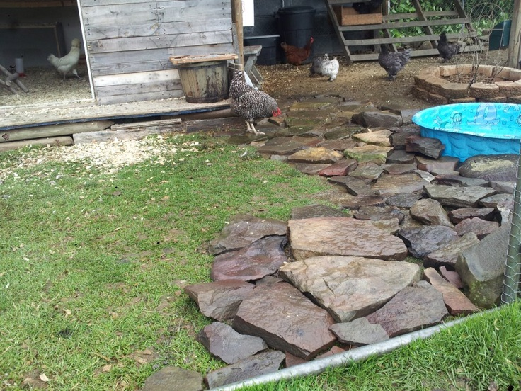 rocks around duck pool to keep mud out of the pen