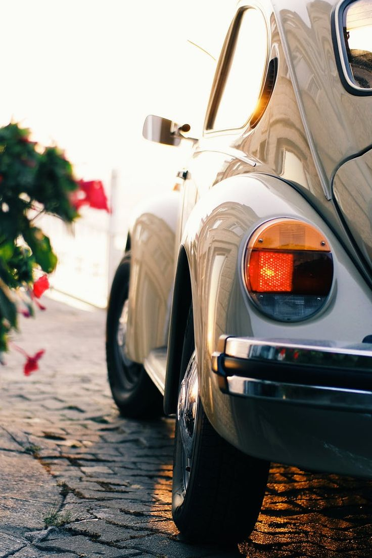 Gray Volkswagen Beetle Near Pink Flowers