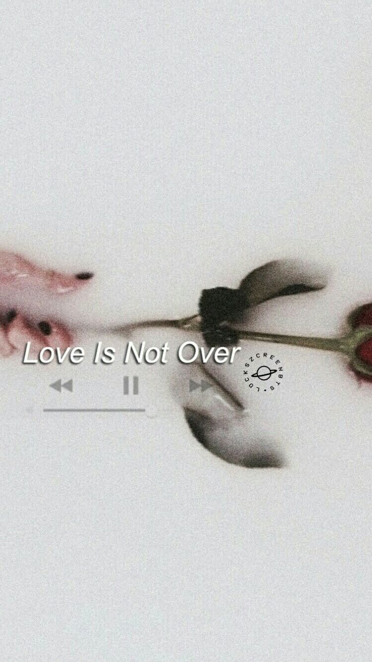 Love is not Over BTS wallpaper