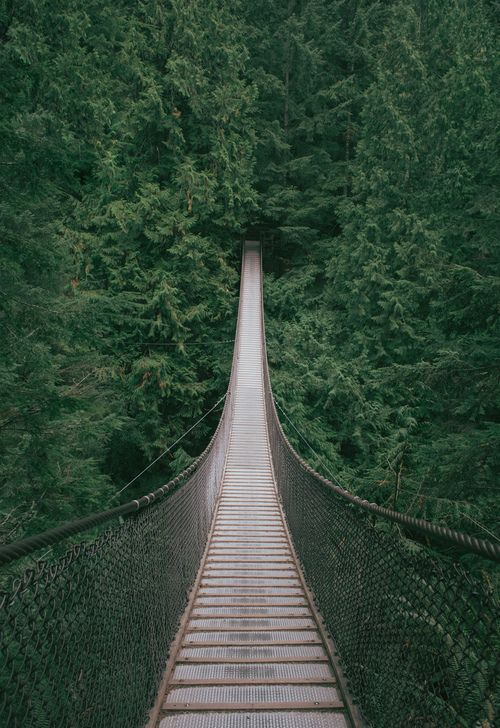 Lynn Canyon Suspension Bridge, British Columbia, Canada