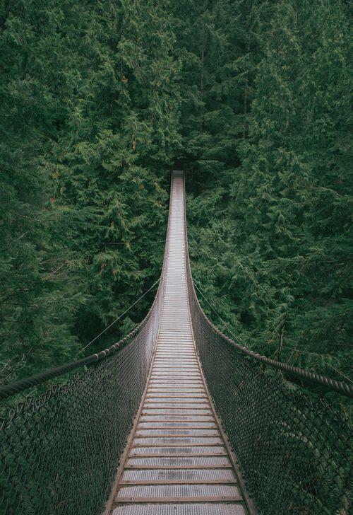 Lynn Canyon Suspension Bridge, British Columbia, Canada
