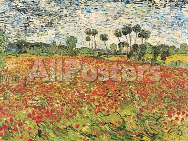 Best Fields Of Poppies Images On Pinterest Field Of Poppies - Artist plants 12 acre field to create a giant artwork inspired by van gogh