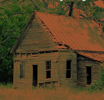 """From the Lighthouse Blog: When People Say, """"But The Shack is Just a Novel!"""""""