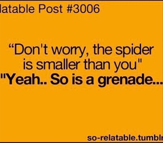 HATE. HATE. HATE. spiders!!! - Kelsey Beyer! :)