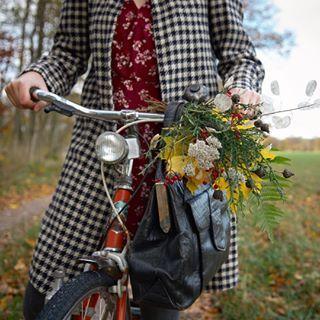 The One Bouquet per Day Series [180/184] #onebouquetperday Greater knapweed, yarrow, honesty, guelder rose, male fern, broom, Norwegian maple, picked along the road between Röslöv and Ljungarum today 🍁🍂 [Swedish: väddklint, röllika, judaspenningar, skogsolvon, träjon, harris, lönn   German: Skabiosen-Flockenblume, Schafgarbe, Einjähriges Silberblatt, Gewöhnlicher Schneeball, Wurmfarn, Besen-Ginster, Spitz-Ahorn   Latin: Centaurea scabiosa, achillea millefolium, lunaria annua, viburnum...
