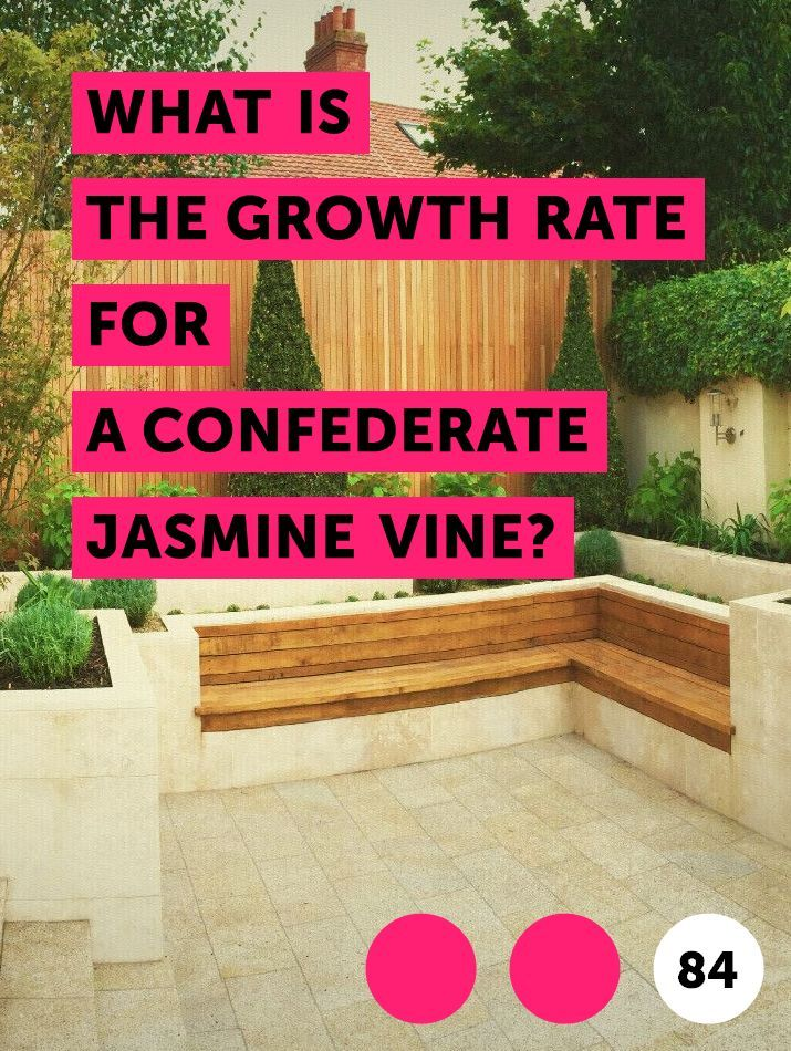 Learn What Is The Growth Rate For A Confederate Jasmine Vine How To Guides Tips And Tricks Confederate Jasmine Jasmine Vine Star Jasmine Vine