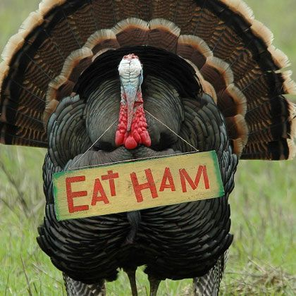 funny thanksgiving jokes.