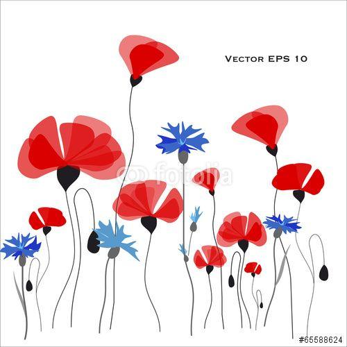 #Poppies and #cornflowers #Vector #illustration  #Spring #summer #Flower #garden #flora #floral