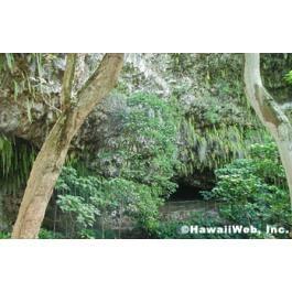 Fern Grotto Kayak trip