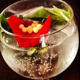 Gin tonic. Bar metropolitan. Vaso bola. Madrid.
