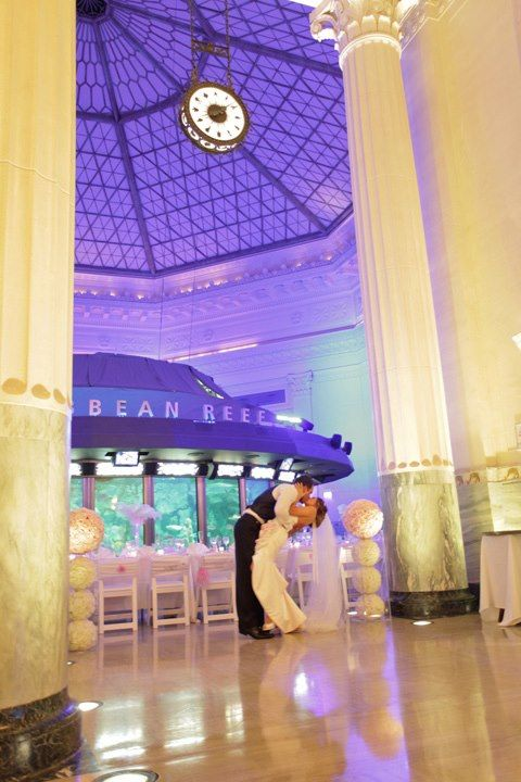 Shedd Aquarium Weddings Price Out And Compare Wedding Costs For Ceremony Reception Venues In Chicago Il