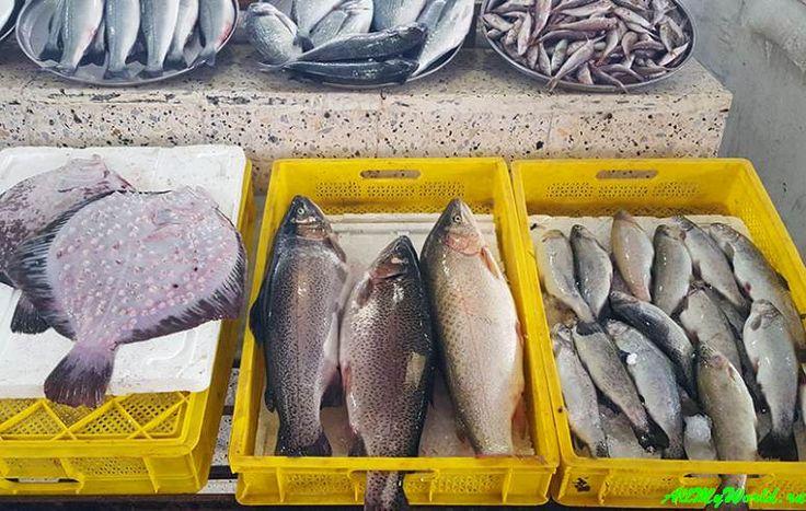 Шоппинг в Батуми: рынки, супермаркеты и магазины - рыбный рынок