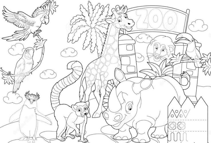 Zoo Coloring Sheet 2017 16843 Zoo Coloring Page Zoo