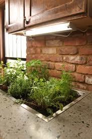 Countertop herb garden My Style Pinterest Gardens Herbs