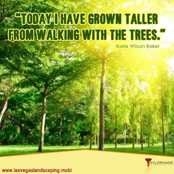 Landscaping Quotes Brilliant 35 Best Quotations Images On Pinterest  Quotations Searching And