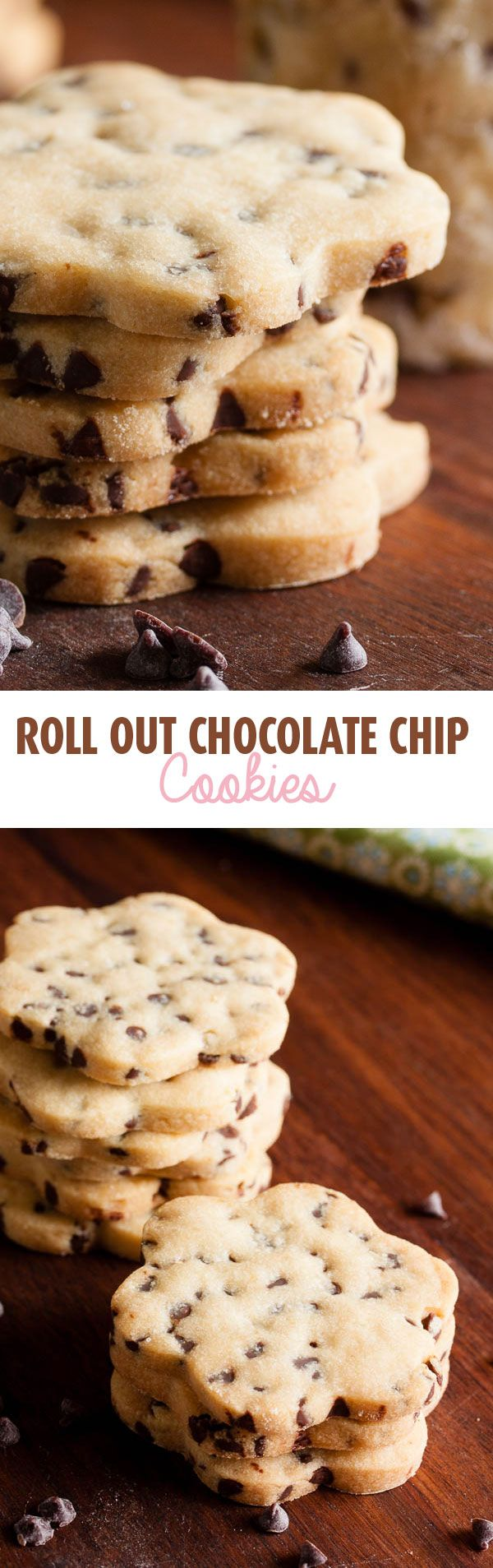 These roll-out chocolate chip cookies are soft and slightly crumbly, like a shortbread studded with tiny chocolate chips. Great cookie cutter cookie!